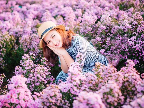 Lập kèo đi vườn hoa thạch thảo ở Bà Rịa đang nở rộ